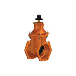 ej 23020 Resilient Wedge Gate Valve, 4 in, Flange, Ductile Iron Body