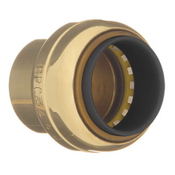 EPC TECTITE™ 10155504 217 Push Tube Cap, 1 in, C, Brass