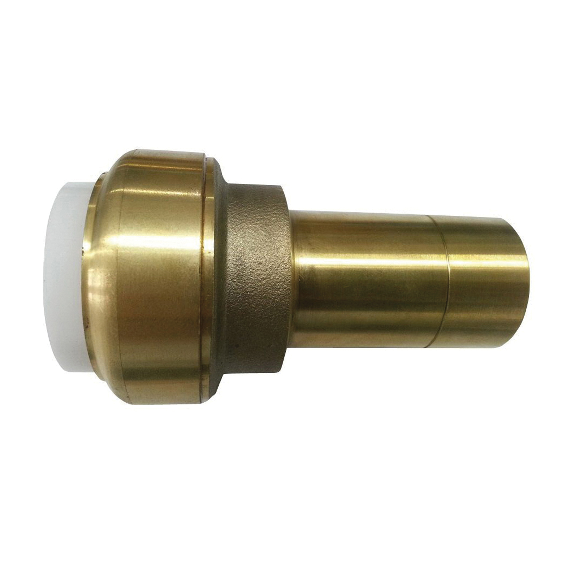EPC TECTITE™ 10177504 219 Push Transition Adapter, 1 in, C x IPS x Fitting x C, Brass