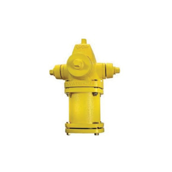 EJP Waterous Pacer® WB-67-250 5 Hydrant, 250 psi, Ductile Iron