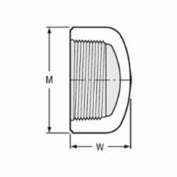 Spears® 448-012 Pipe Cap, 1-1/4 in, FNPT, SCH 40/STD, PVC, Domestic