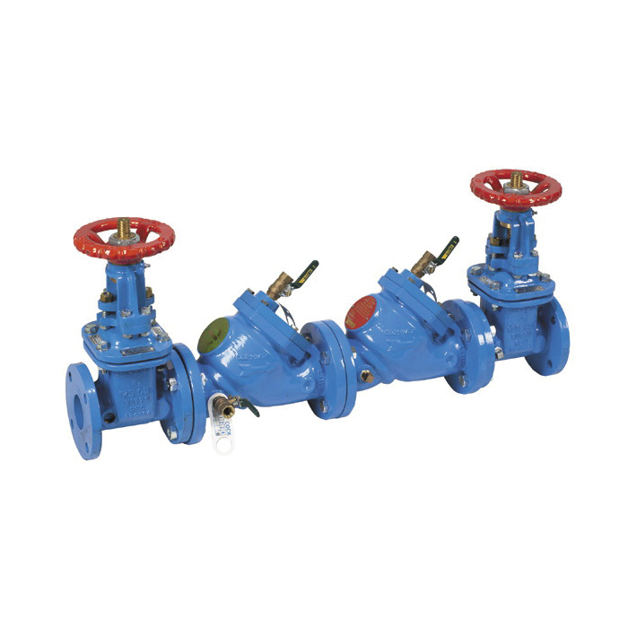 WATTS® LF709 Lead Free Double Check Valve Assembly With NRS Gate Valve, 2-1/2 in, Cast Iron