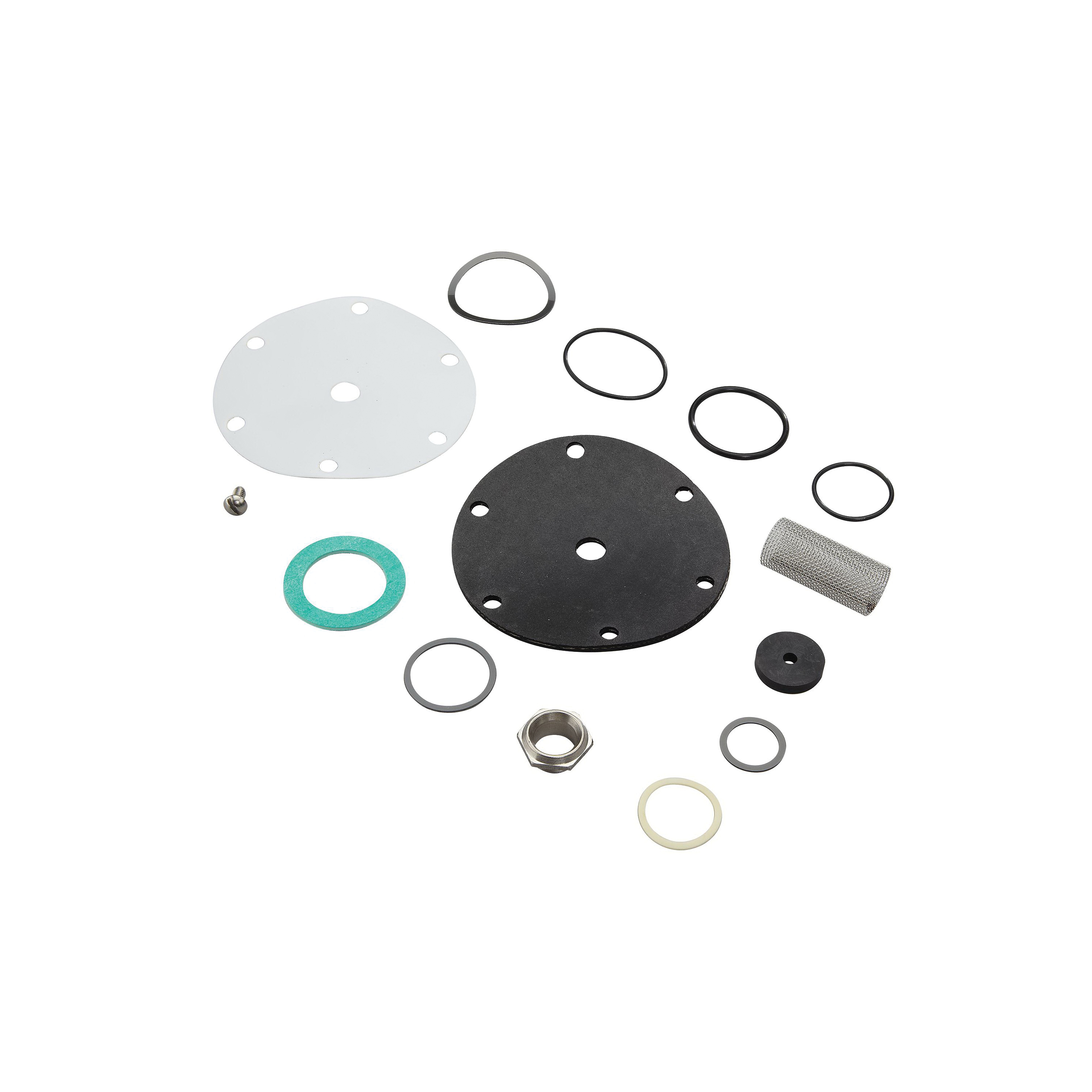 WATTS® 0125123 Repair Kit