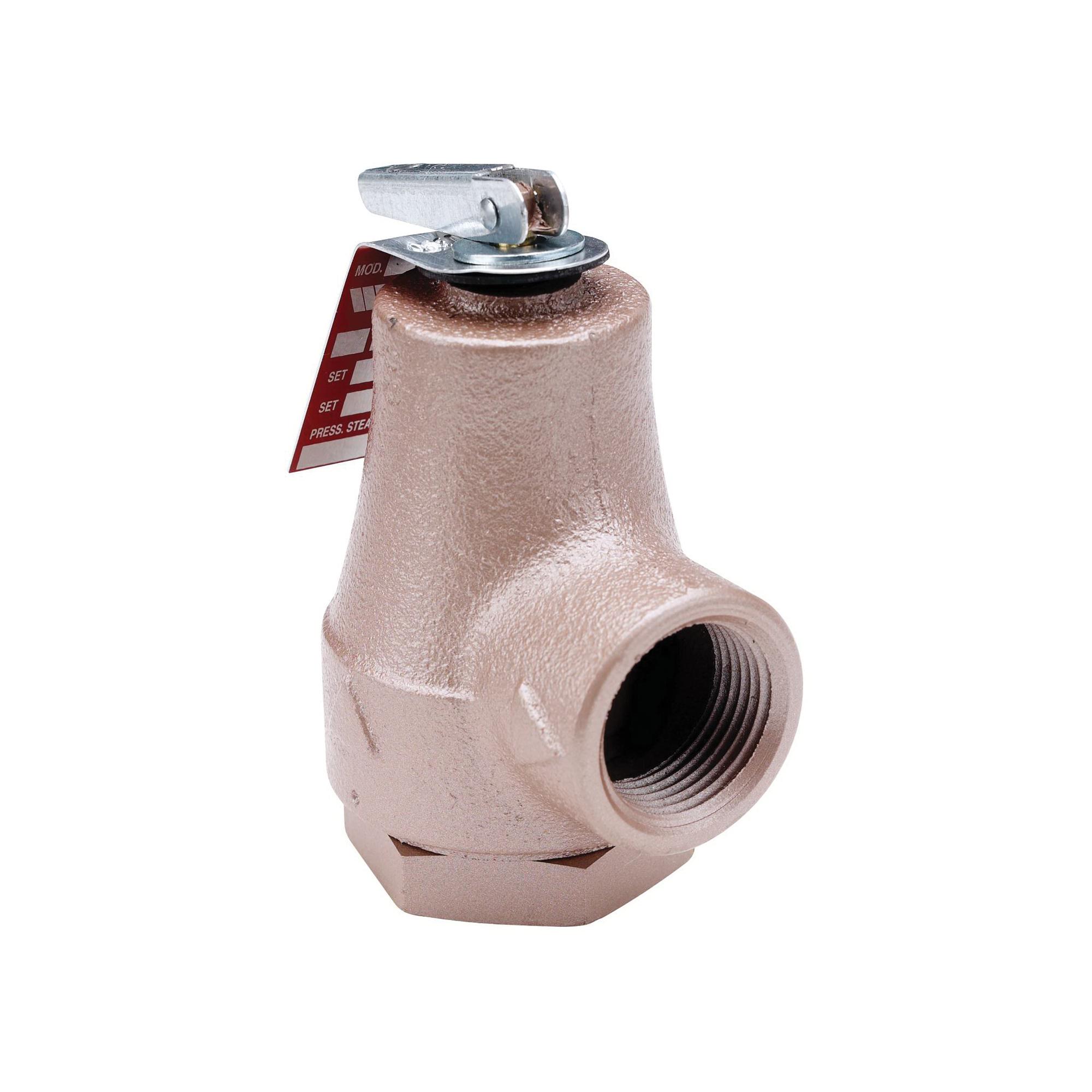 WATTS® 0358550 374A Pressure Relief Valve, 3/4 in, FNPT, Iron Body