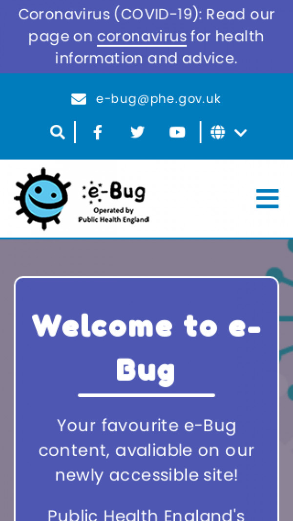 Mobile screenshot of e-BUG website