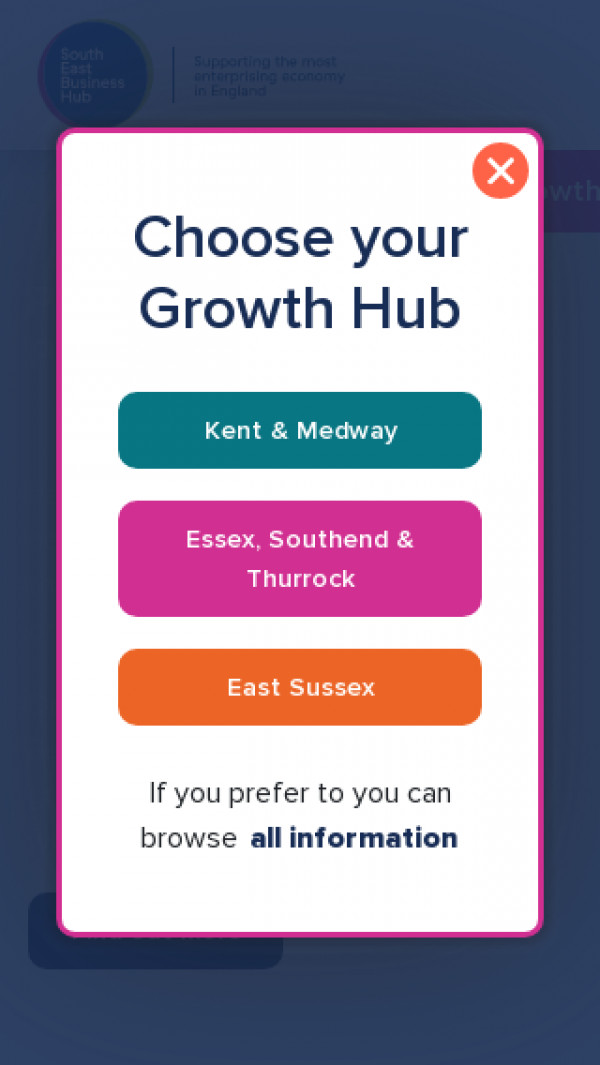 Mobile screenshot of South East Business Hub website