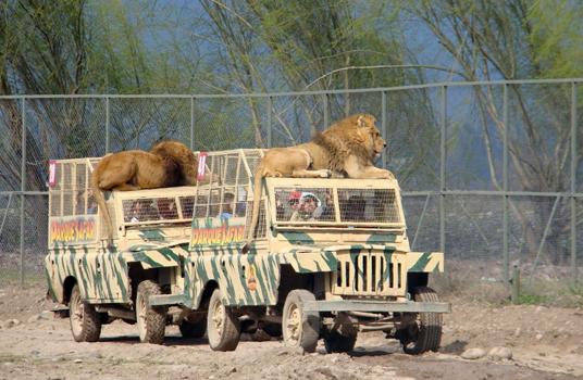 Convenio Parque Safari