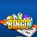 bingo us
