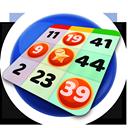 Bingo swipe premium