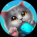CatiO Cat