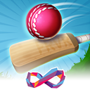 Cricket FRVR - Pro Baseball Game