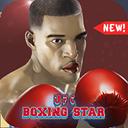 UFC Boxing Star