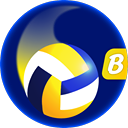 Volleyball Master™