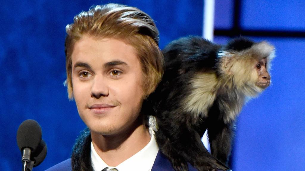Justin Bieber's Monkey | 8 Weirdest Celebrity Pets | InstantHub