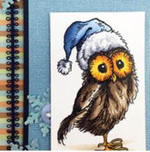 CHRISTMAS Santa Hat Owl b