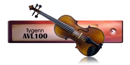 Violin Choice 3