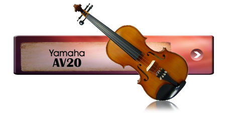 Violin Choice 2