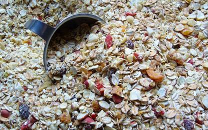 La Avena, cereal ideal para la alimentación cotidiana