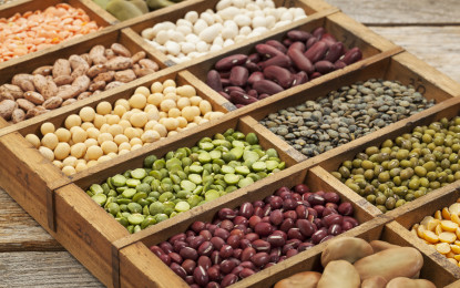 Ventajas y aportes de las legumbres: Alimento nutritivo y cultivo saludable