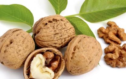 Nueces: Un  alimento con  un perfil nutricional completo