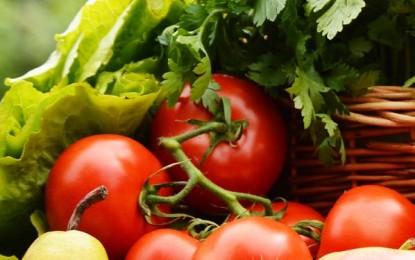 Nutrición y salud cardiovascular