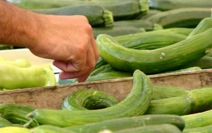 Cómo lograr que la selección de alimentos saludables sea una verdadera opción para todos los chilenos
