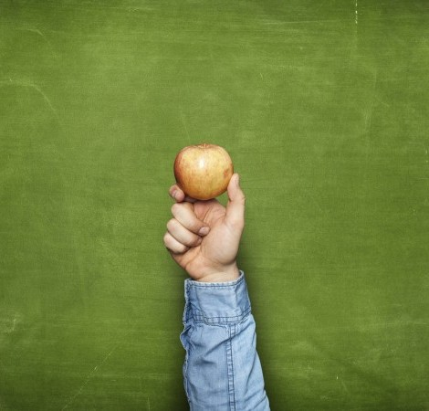 Seguridad Alimentaria y cómo se pueden evitar las pérdidas y desperdicios