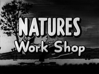 Nature's Workshop