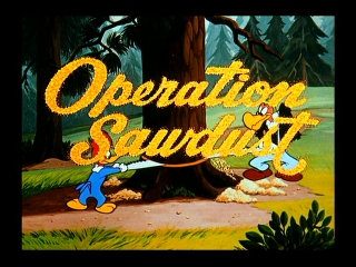 Operation Sawdust
