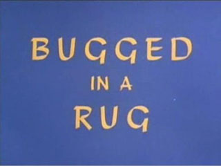 Bugged in a Rug