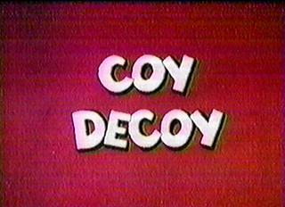 Coy Decoy