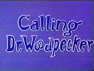 Calling Dr. Woodpecker