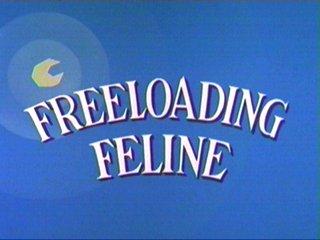 Freeloading Feline