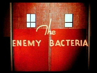 The Enemy Bacteria