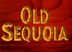 Screenshots from the 1945 Disney cartoon Old Sequoia