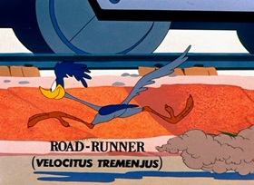 Screenshots from the 1953 Warner Brothers cartoon Zipping Along