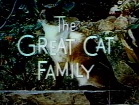 Screenshots from the 1956 Disney cartoon The Great Cat Family