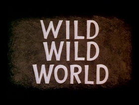 Screenshots from the 1960 Warner Brothers cartoon Wild Wild World