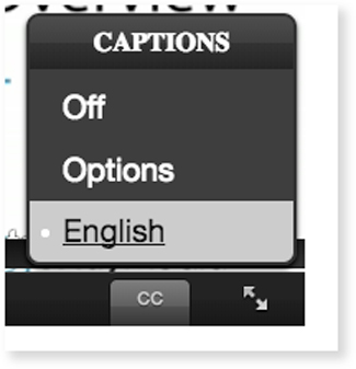 set language for dual-language captions display English Spanish