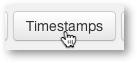 Trascript timestamp display