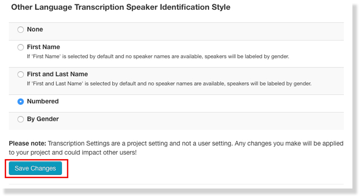 Other Language transcription settings saved speaker identification content type