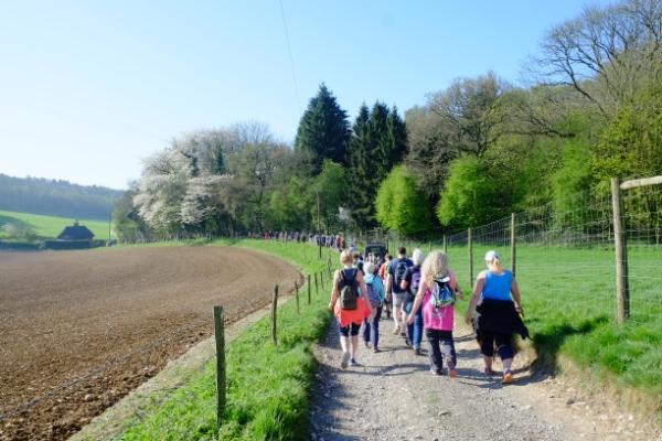Farleigh Wallop Woodland Walk