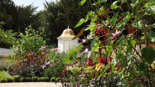 Behind the scenes: restoring the Mount Vernon Garden