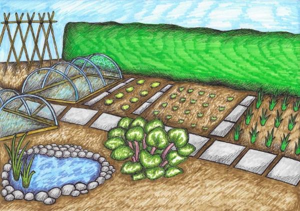 Pond creation at Grow in Glenburn Community Garden