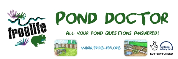 Pond Doctor Event