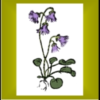Alpine Garden Society - Woking West Surrey Group logo