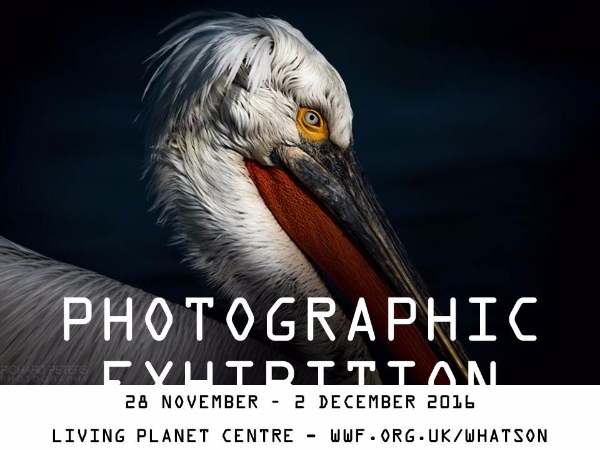 Photography exhibition at WWF