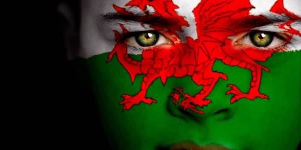Bath Exiles Welsh Society
