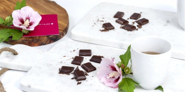 RARE Chocolate Tasting with Master Taster Tracy Arden Chapman