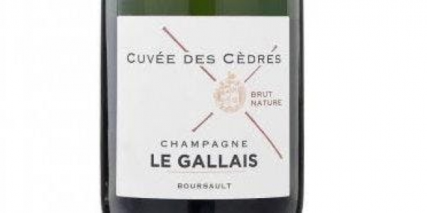 MEET THE GROWER JUNE  2019 | Champagne LE GALLAIS Tasting with Charlotte Le Gallais | BATH